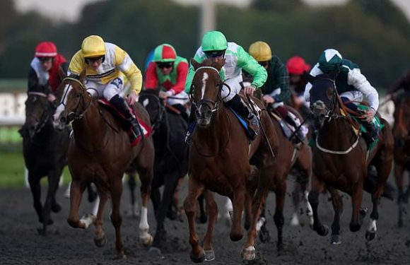 Robin Goodfellow's racing tips: Best bets for Thursday, October 21